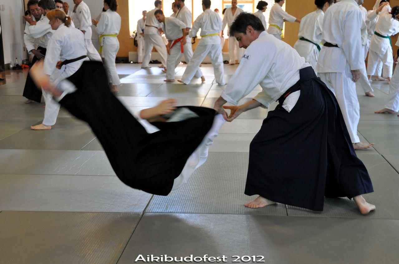 Aikibudofest 2012, samedi (+DSC_1640_f_al_rot_t)